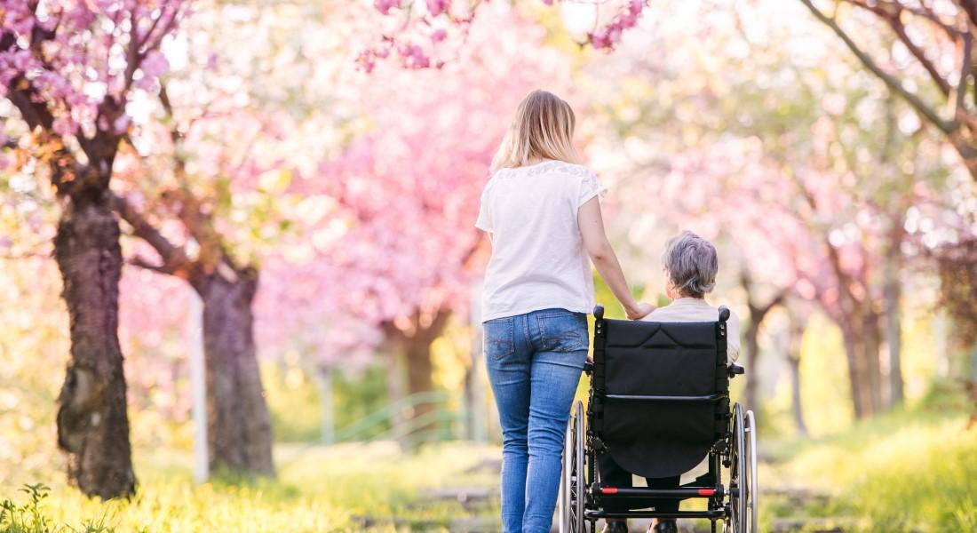 Elderly woman in wheelchair - Colourbox