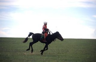 Fieldwork in Mongolia